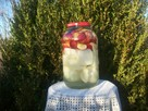 Kiszone jabłka z cebulą - 4