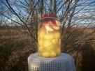 Kiszone jabłka z ziemniakami - 5