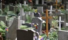 Sprzątanie grobów, opieka nad grobami