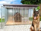 SOLIDNY I TANI kojec dla psa 3x2 REX konstrukcja ocynkowana