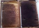 Plastry woskowe dla moli woskowych barciak większy wysyłka
